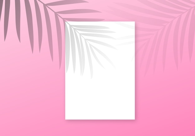 Palm shadow overlay background.  transparent palm leaves summer