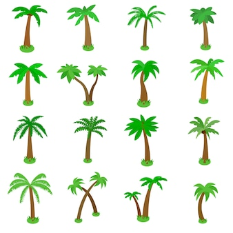 Palm tree icons set in isometric 3d style isolated on white