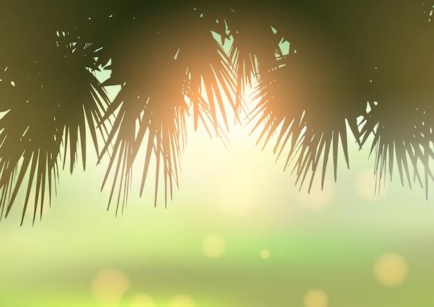 Palm tree leaves against bokeh light background