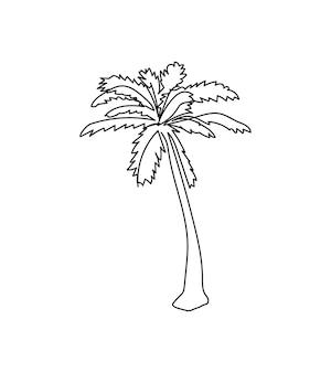 야자수 한 라인 아트 식물의 연속 라인 허브 나무 야자수 잎 코코넛