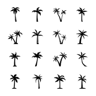Palm tree outline
