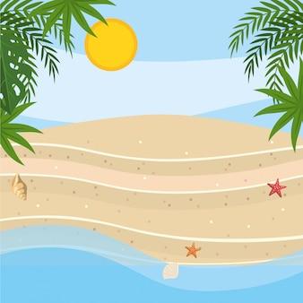 Palm tree of summer season