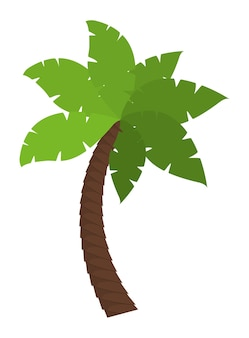 Palm tree tropical nature summer beach plant icon