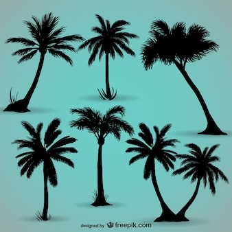Palm trees black silhouettes