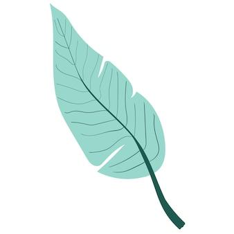 야자 열 대 잎 야자수 잎 정글과 열대 우림 주식 벡터 일러스트 레이 션 화이트 절연