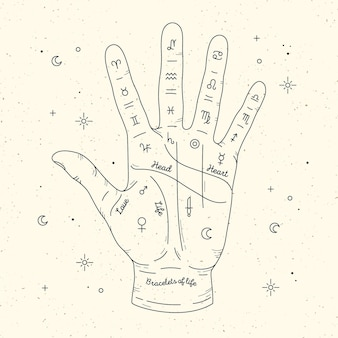 Palmistry read design