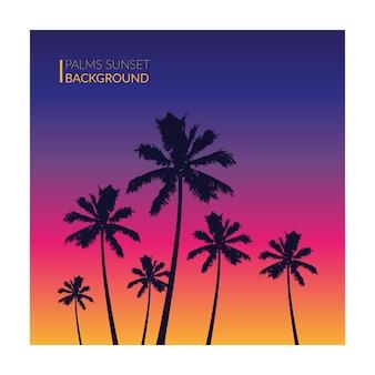 Palms sunset background