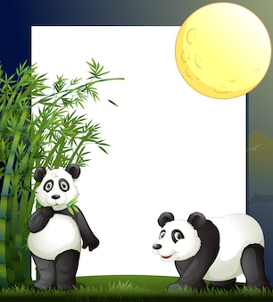 Panda and bamboo border template