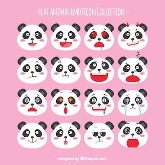 Panda bear emoticon collection