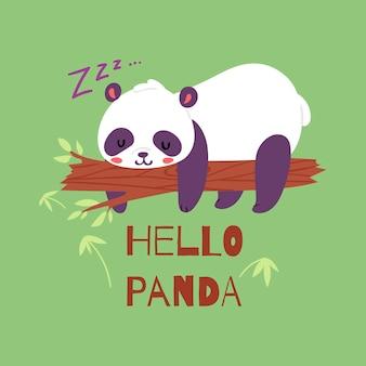 Panda bear sleeping on tree branch.