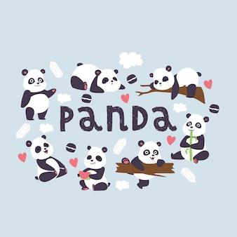 Panda bearcat chinese bear with bamboo in love playing or sleeping illustration backdrop