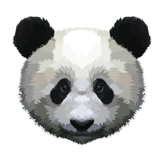 Panda head isolated on a white background