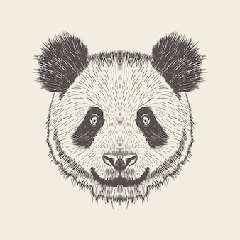 Panda illustration, hand drawn design.