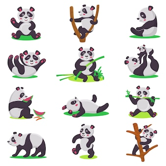 Panda kid vector bearcat character or chinese bear child playing or eating bamboo illustration set