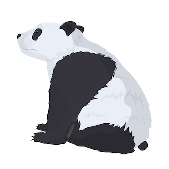 白い背景の上のパンダ。デザインのポストカード、tシャツ、バナーに最適です。