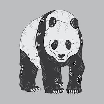 Векторная иллюстрация panda