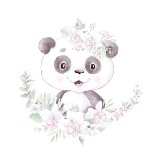 Panda, watercolor illustration isolated