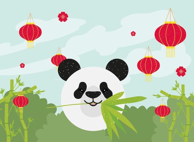 중국 등불을 가진 팬더
