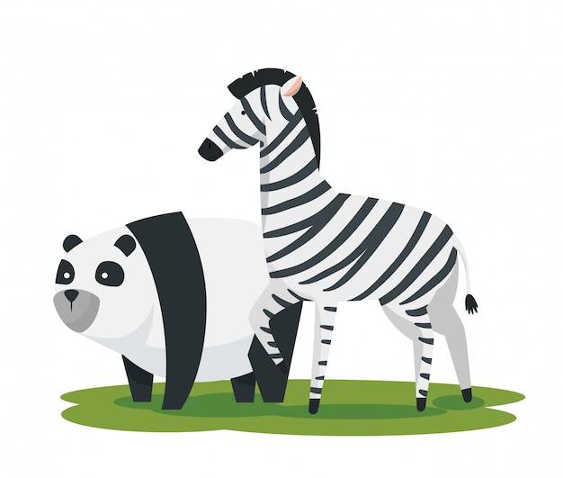 Panda and zebra wild animals reserve