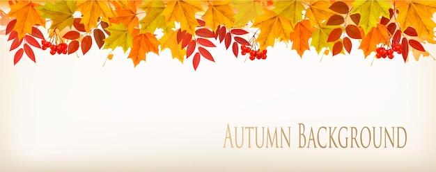 パノラマ秋秋カラフルな葉の背景。ベクター。