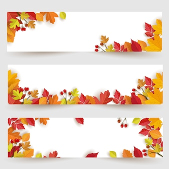Panoramic banner background with autumn design and leaves
