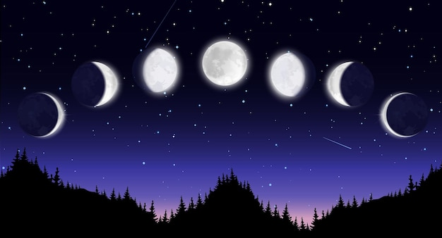 Panoramic night scenery with forest