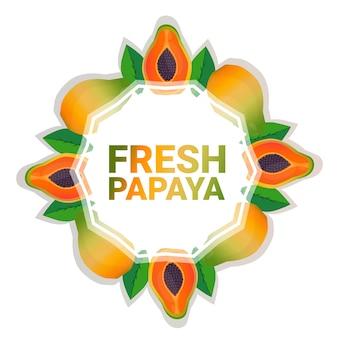 パパイヤフルーツカラフルなサークルコピースペースホワイトパターン背景、健康的なライフスタイルやダイエットの概念上有機
