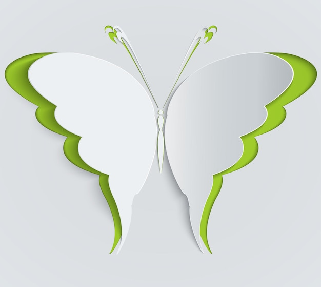 Paper butterfly illustration