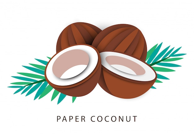 Paper coconut and leaf abstract art isolated on white background