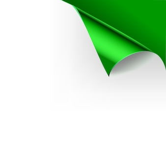 Paper curled glossy page corners folds.   illustration template for poster green color