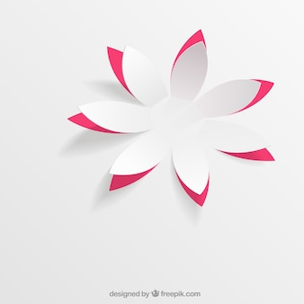 Paper flower in pop up style