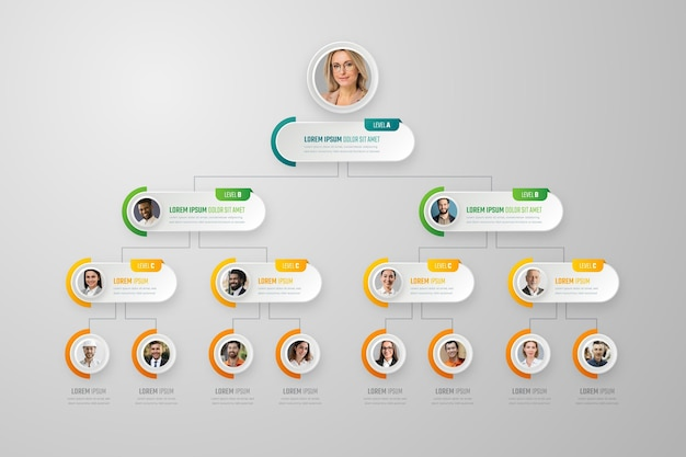 Paper style organizational chart infographic with photo