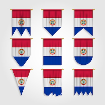 Paraguay flag in various shape