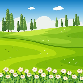 Park outdoor scene with flower field and blank meadow