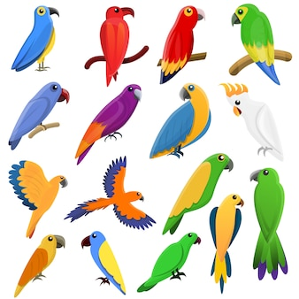 Parrot icons set, cartoon style
