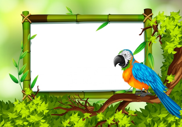 Parrot on nature green template