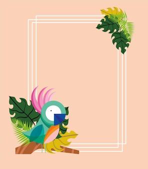 앵무새 나무 프레임