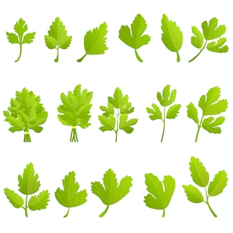 Parsley icons set, cartoon style