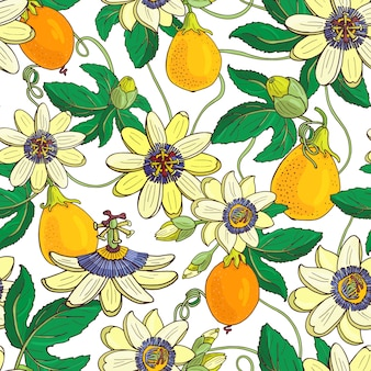 Passion flower passiflora, passion fruit seamless pattern