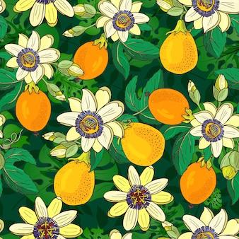 어둠에 passionflower (passiflora, 열정 과일)