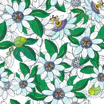 トケイソウトケイソウ、白い背景の上のパッションフルーツ。大きな明るいエキゾチックな花、つぼみ、葉と花のシームレスなパターン。印刷繊維、布、包装紙の夏のイラスト。
