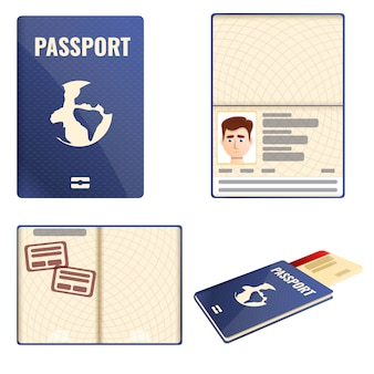 Passport icons set