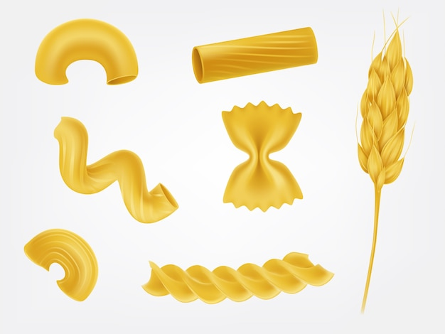 Pasta types and forms realistic vector set