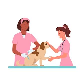 獣医クリニックでの患者の犬の予定ベクトルイラスト漫画の獣医医師の女性