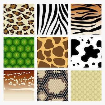 Коллекция образцов из кожи животных. в том числе змея, олень, тигр, черепаха, жираф, корова, зебра, леопард.