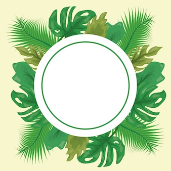 Pattern of green tropical leaves with round label