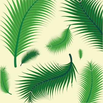 Pattern of green tropical palm leaves