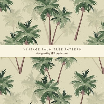Pattern of palm trees in vintage style