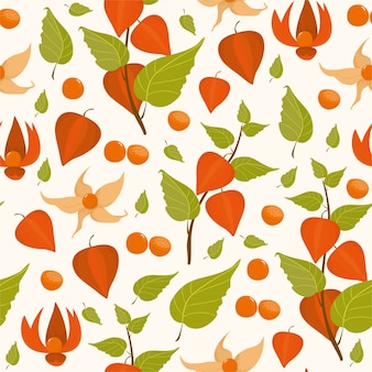 Pattern physalis