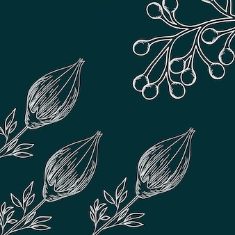 Pattern plants and herbs isolated icon